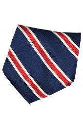 Soprano Blue Red And White Striped Silk Hanky