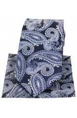 Posh & Dandy Large Navy & Blue Paisley Silk Tie & Hanky Set